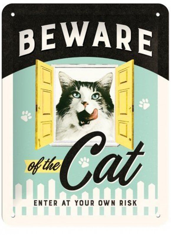 beware-of-the-cat_1